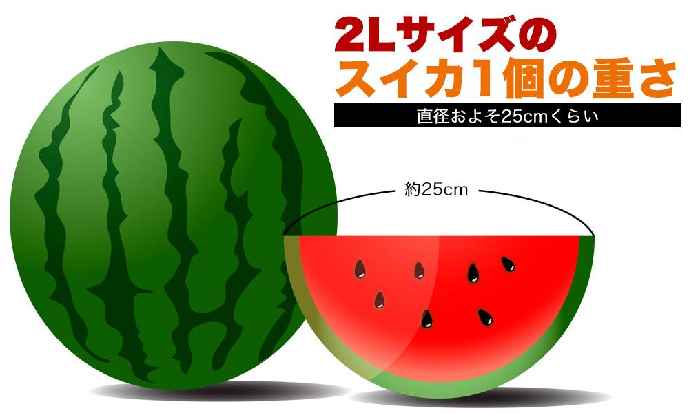 2Lサイズの大きさと同じ重さ