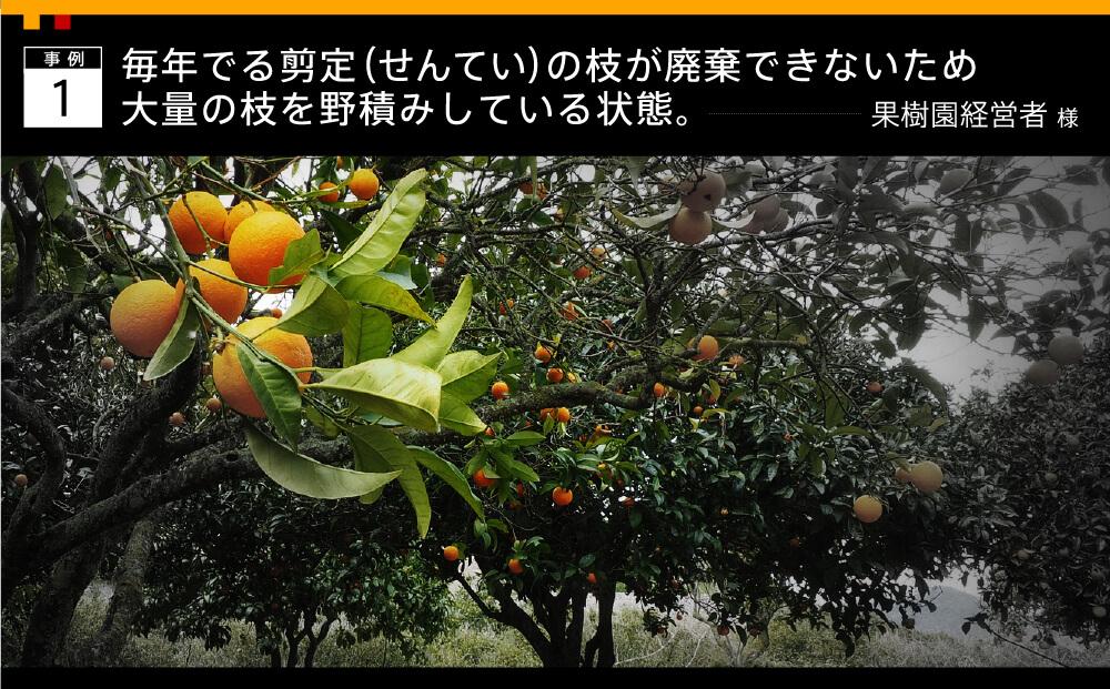 事例1 毎年出る剪定の枝が廃棄できないため大量の枝を野積みしている状態